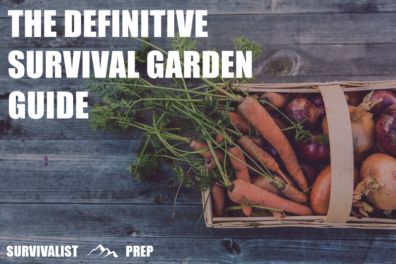 The Definitive Guide to Survival Seeds, Heirloom Seeds, and Planting a Survival Garden
